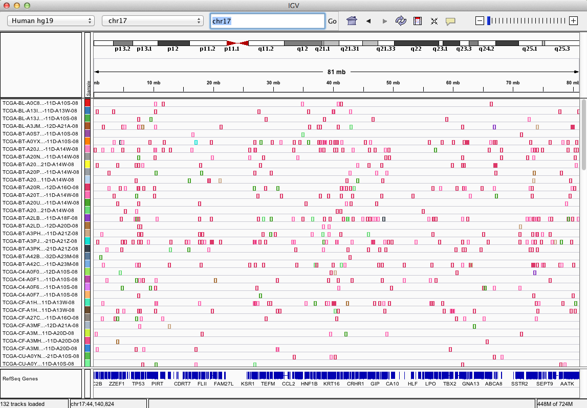 The All Chromosomes View Summarizes Mutations In A