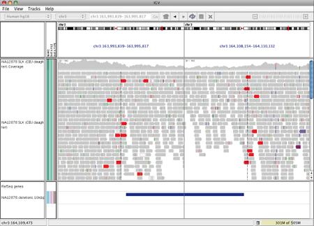 Interpreting Color by Insert Size | Integrative Genomics Viewer