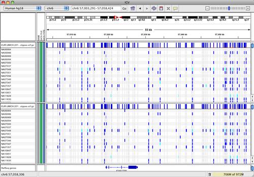 VCF Files | Integrative Genomics Viewer